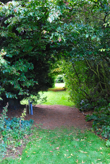 Walking Down the Garden Avenue at Knole