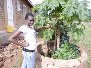 Enjoying the fruits of waste water | by Sustainable sanitation