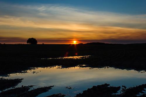 trees sunset sky water clouds spring eau ciel arbres québec nuages reflexion printemps coucherdesoleil 2015 mirabel