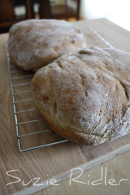 Homemade Caraway Rye Bread