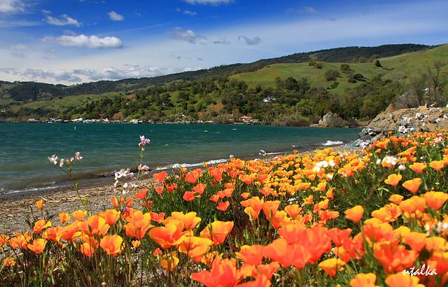 Clear Lake, CA