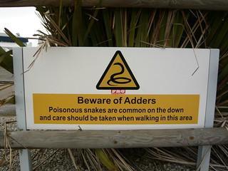 Beware of Adders   by WordRidden