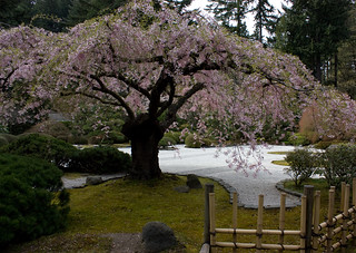 2009_04_17_portland_japanese_garden | by Bruno's Flickr