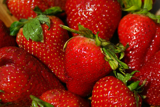 Strawberries | by Kyle McDonald