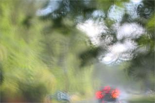 Rain | by Bahman Farzad