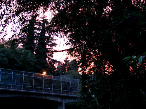 bridge sun sunrise harbor washington luna aberdeen rise nyx grays