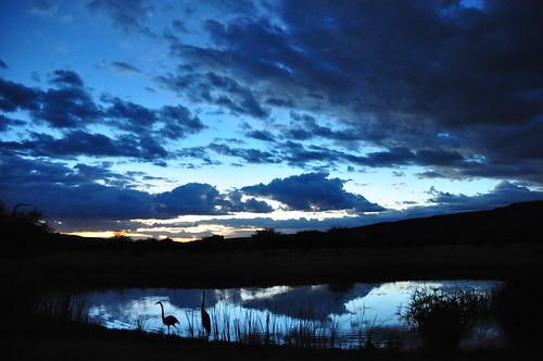 camp panorama desert namibia roomwithaview pierrelesage africatsafari