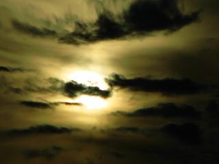 Sunrising Reflection | by MSVG