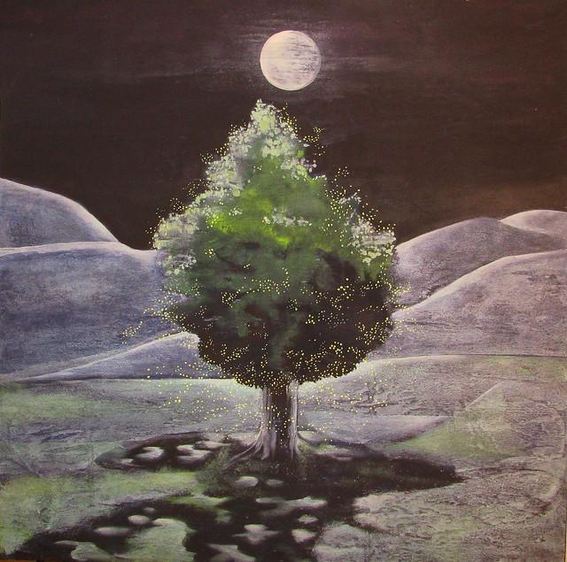 L'albero delle lucciole - A árvore dos pirilampos - The tree of fireflies