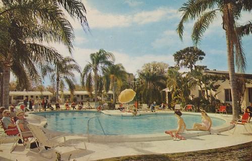 pool vintage stpetersburg florida postcard motel palmtree aaa qualityinn cocoanutgrove