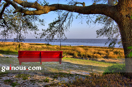 ocean red tree les canon bench seaside oak branch gulf florida swing serene oaktree hdr apalachicola canonefs1022mmf3545usm aperturepriority franklincounty 40d canon40d gainous