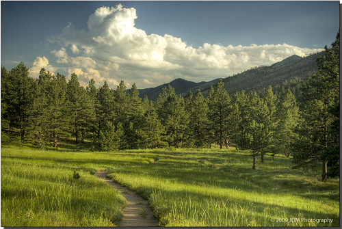 trees sunset grass clouds colorado shadows hiking trails wildflowers openspace pinetrees hdr bouldercolorado heilranch ranches photomatix challengeyouwinner aplusphoto purplemountainmajesty ranchimages coloradoranches