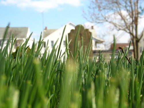 green cemetery grave graveyard grass spring memorial pennsylvania headstone tomb tombstone pa civilwar german hanover 18thcentury epitaph americancivilwar hanoverpa trinityucc trinityunitedchurchofchrist trinityreformedcemetery reformedcemetery emmanuelreformedcemetery