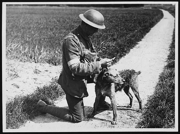 Easton Press WORLD WAR I & WWII 2 Vol Willmott, Cross ... |Wwi Messenger