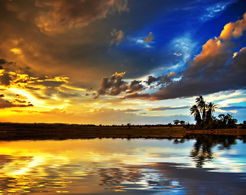 life sunset yellow palms geotagged long kenya dream imagine coordinates position lat amboseli jamesblunt lifeissooogood oneofthebrighteststars traumlichtfabrik geo:lat=2666667 geo:lon=37283333 imisskenya