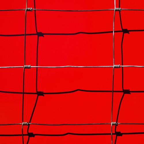 shadow red black lines fence grid wire zürich barbera twirls artlegacy 183710 iwanttobethefirsttoo todayjibbrrocks jibbrisfirstddd whatatitledu yeahsetthehorriblescotsteilchenoninstantban weallliketobefirst