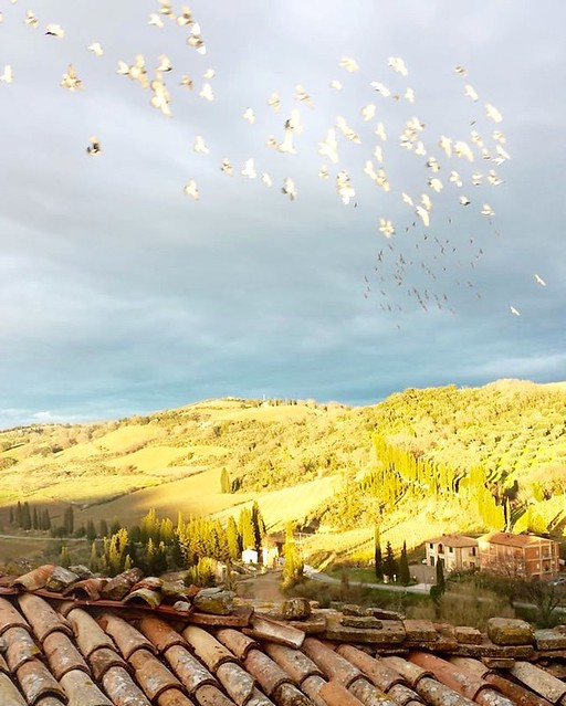 Good morning world! ☀️☁️ #borghetto #bb #tuscany #italy #discover #like #follow #magicplace #landscape master bedroom window landscape 🙌👍