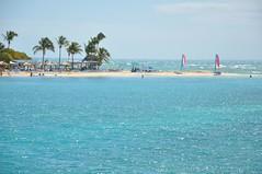 Palomino Island   by breakawayguy