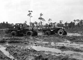 Swamp Buggy Day races: Naples, Florida