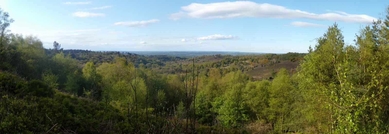 View Milford to Haslemere