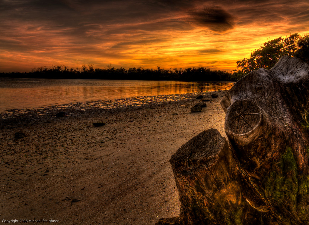 Hanging onto the day by MDSimages.com