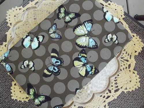kindlebutterflies02