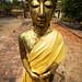 Thailand - Chiang Mai by vectorian