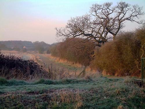 road morning misty sunrise landscape dawn frost path lane ih thegalaxy mygearandmepremium mygearandmebronze mygearandmesilver mygearandmegold mygearandmeplatinum mygearandmeplatinium