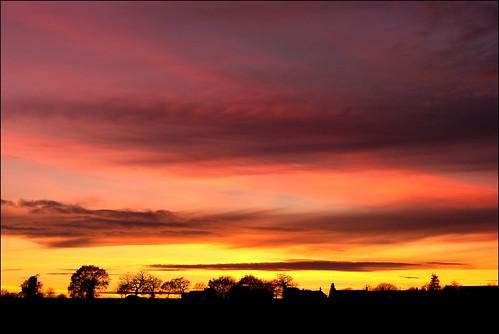 pink trees winter light sunset red sky orange sun black colour nature silhouette yellow clouds contrast dark