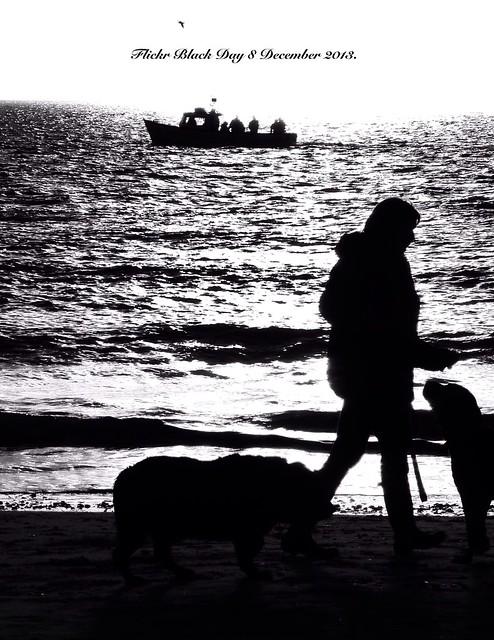 Flickr Black Day 8 September 2013