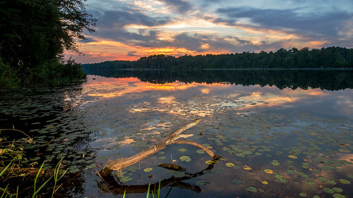 cherawstatepark nikond600 lakejuniper