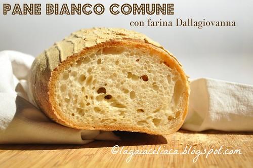 pane bianco senza glutine farina dallagiovanna | by mammadaia