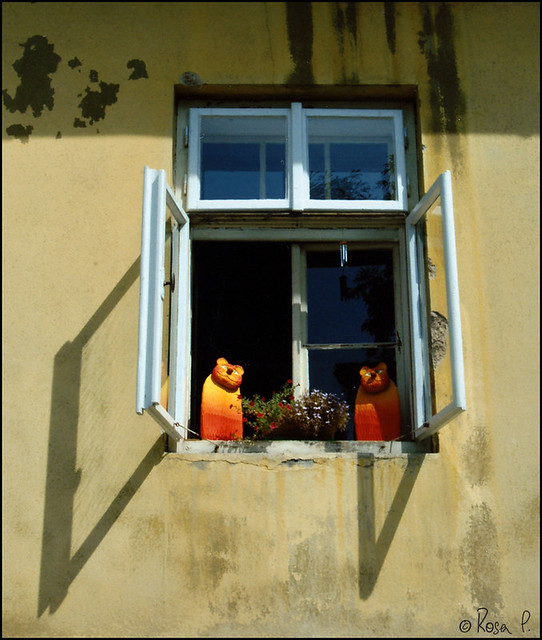 Czech Republic - Prague - Window