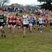 XC Sectionals Boys D