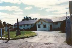 Cowan Street 3 RSL Building pre 1952 -  bottlebrush planted G3 GPS kids 1952