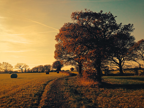 autumn light england sunlight landscapes countryside walks cheshire farmland ios iphone culcheth iphone5 applecrypt