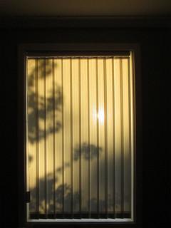 solstice window shadows copy | by quadrapop