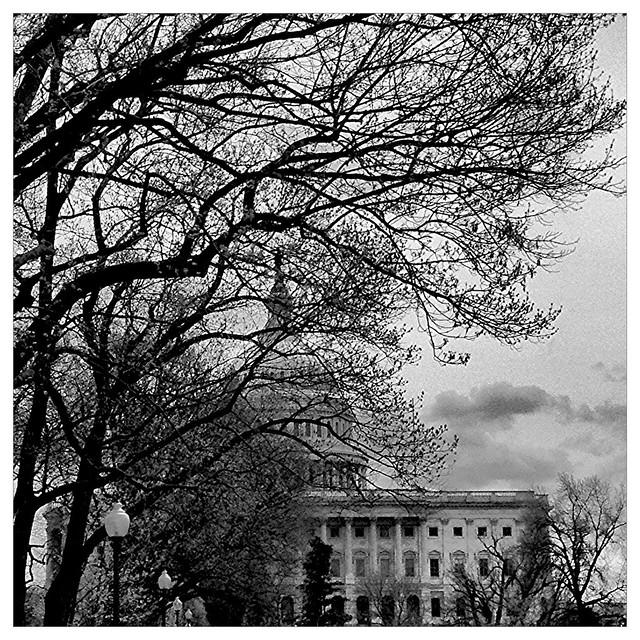 Capitol Building- Through a Veil