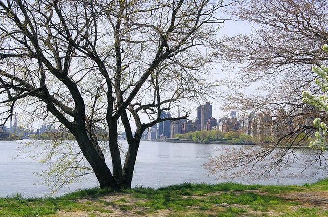 Wards Island...East River
