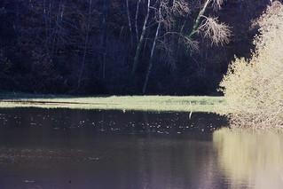 La mayenne(river)