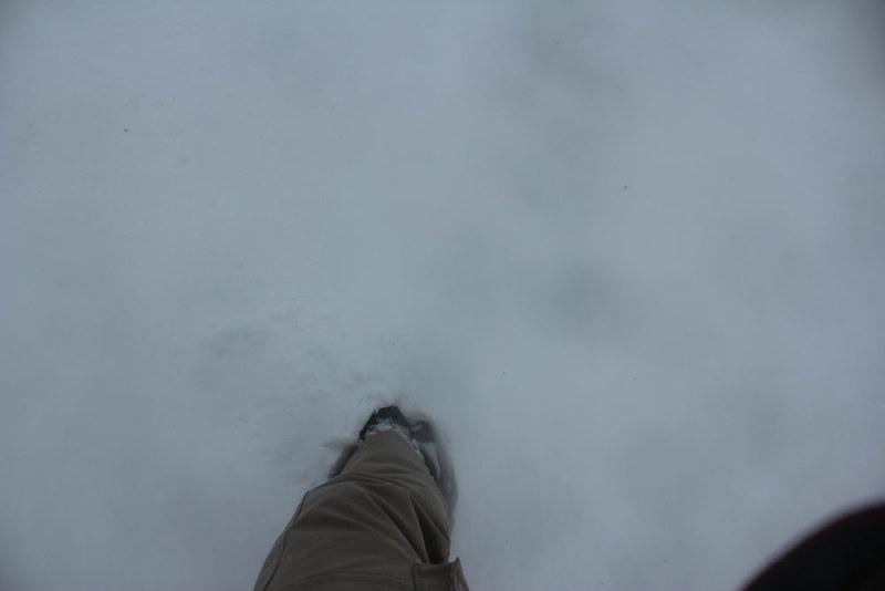 雪の鎌倉_54