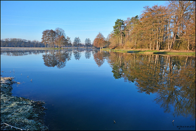 Reflet sur l'étang