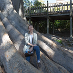 Emily in the tree, Balboa Park