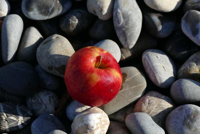 03.04.17.Apple on stones