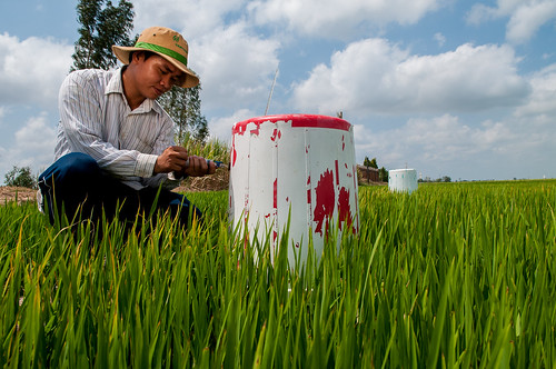 Testing GHGs. The CLUES project is working with farmers to develop drought, salient and submergence tolerant rice varieties in Vietnam. | by CGIAR Climate