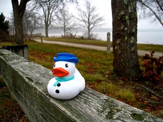 a december landscape