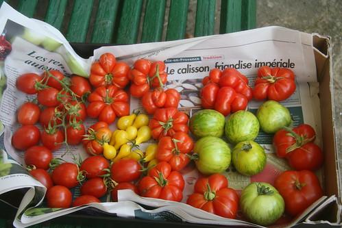 """Concours """"fruits et légumes"""" - Page 3 33525789135_ff3de971ab"""