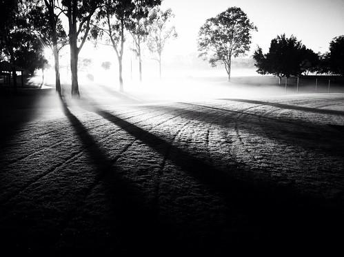 morning blackandwhite white mist black misty fog sunrise early exploring foggy australia explore qld ipswich iphone iphone4 iphonography limestonepark racheljoanne