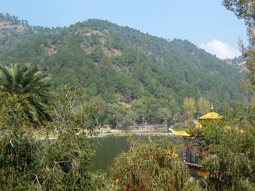 india lake mountains buddhist temples sikh hindu religions himalayas himachalpradesh rewalsar theindiatree