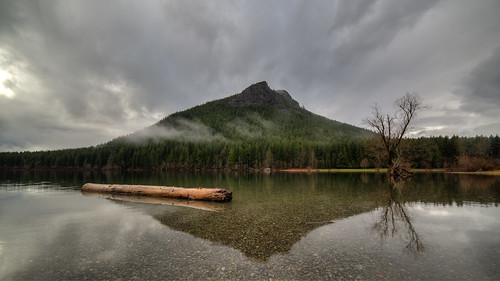 rattlesnakelake landscape pacificnorthwest water reflection nature tree log mountain canon wideangle cloudy still calm clearwater day canoneos5dmarkiii samyang14mmf28ifedmcaspherical johnwestrock washington wallpaper background